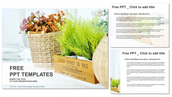 Small Plant Pot Displayed PowerPoint Templates 4