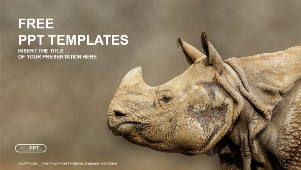 Free nature powerpoint templates design rhino rhinoceros head shot powerpoint templates toneelgroepblik Gallery